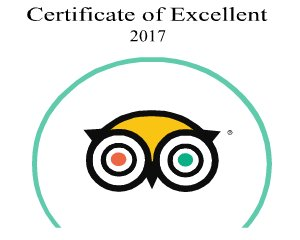 Certificate of Excellent 2017