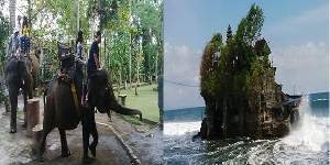 Bali Elephant Ride and Tanah Lot Tours