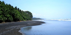 Bali Medewi Beach