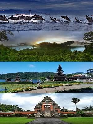 Bali Overnight Tour Day 02 - Bali Dolphin Tour