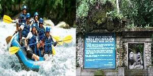 Bali Rafting and Ubud Tours