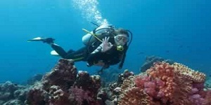 Bali Water Sports - Diving Tour Packages