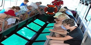 Bali Water Sports - Glass Bottom Boat Tour Packages