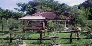 Bali West National Park