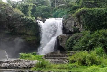 Half Day Ubud Waterfall Tour